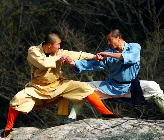 Combattants en Arts martiaux