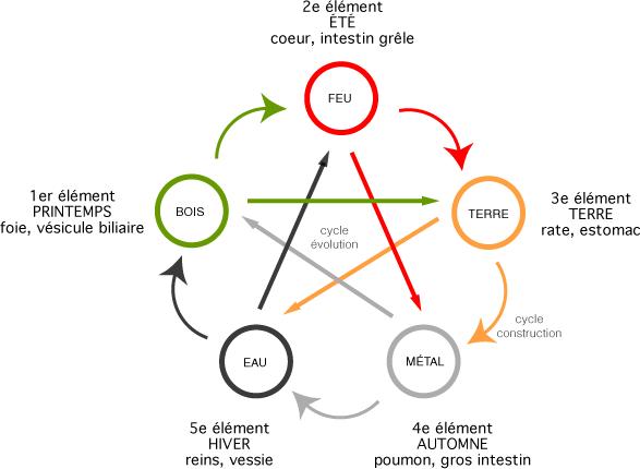 La théorie des Cinq Éléments en Médecine Traditionnelle Chinoise