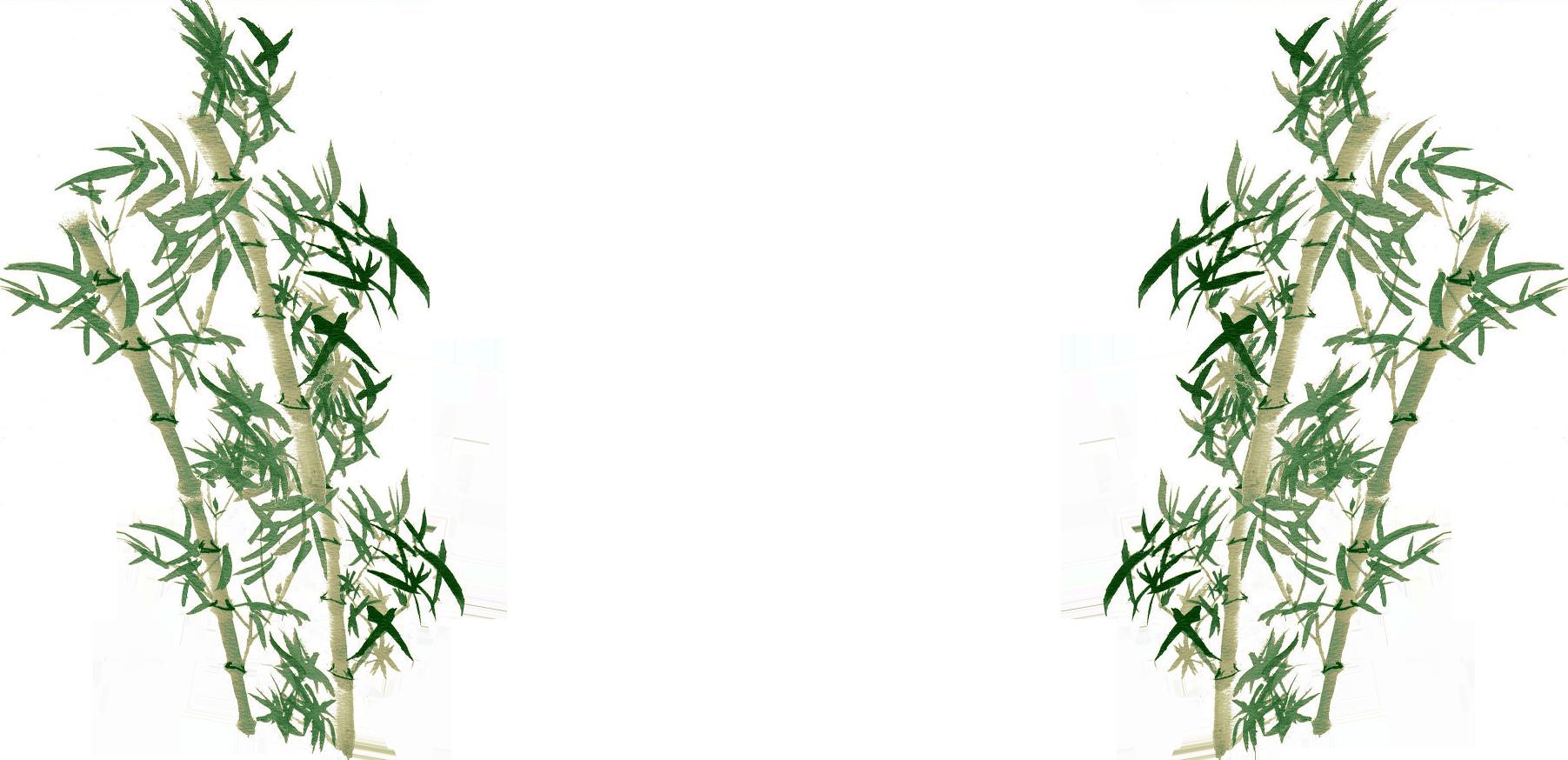 Fond de page en bambous calligraphiés