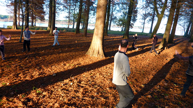 Marche autour de l'arbre en Youshen Bagua Zhang
