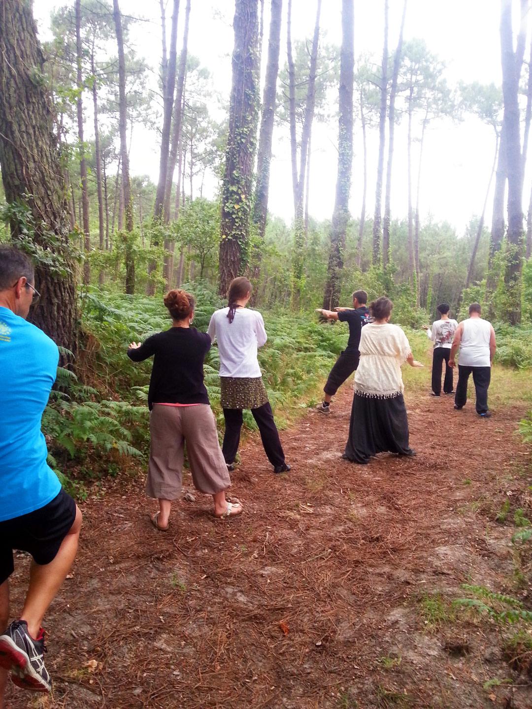 Cours de Bagua Zhang en forêt avec Terre d'Asie lors du stage d'été